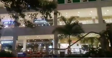 Sights & Sounds of Cagayan de Oro - Centrio Mall Garden