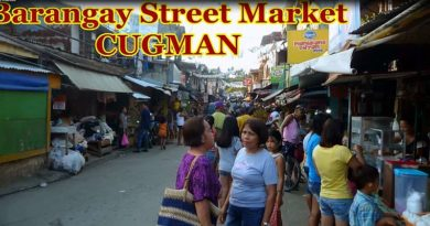Sights & Sounds of Cagayan de Oro City - Barangay Street Market in Cugman Video: Sir Dieter Sokoll KR