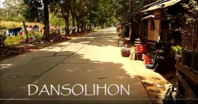 Sounds & Sights of Cagayan de Oro City - Dansolihon Street Stop for Fruits and Veggies Video: Sir Dieter Sokoll KR