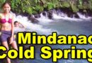 Sights & Sounds of Northern Mindanao - Lanao del Norte - Coldest Spring in Lanao del Norte - Tubod