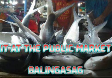 SIGHTS & SOUNDS OF CAGAYAN DE ORO & NORTHERN MINDANAO - Visit at the Market of Balingasag Photo and Video by Sir Dieter Sokoll