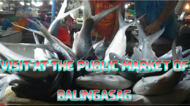 SIGHTS & SOUNDS OF CAGAYAN DE ORO & NORTHERN MINDANAO - Visit at the Market of Balingasag Photo and Video by Sir Dieter Sokoll